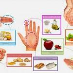 dieta de la mano 2