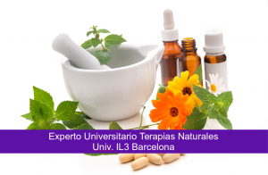 experto Universitario terapias naturales