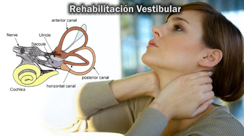 Videos de rehabilitación vestibular