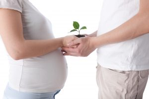 fertilidad Alicante
