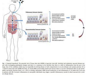 Tratamiento de alergias respiratorias