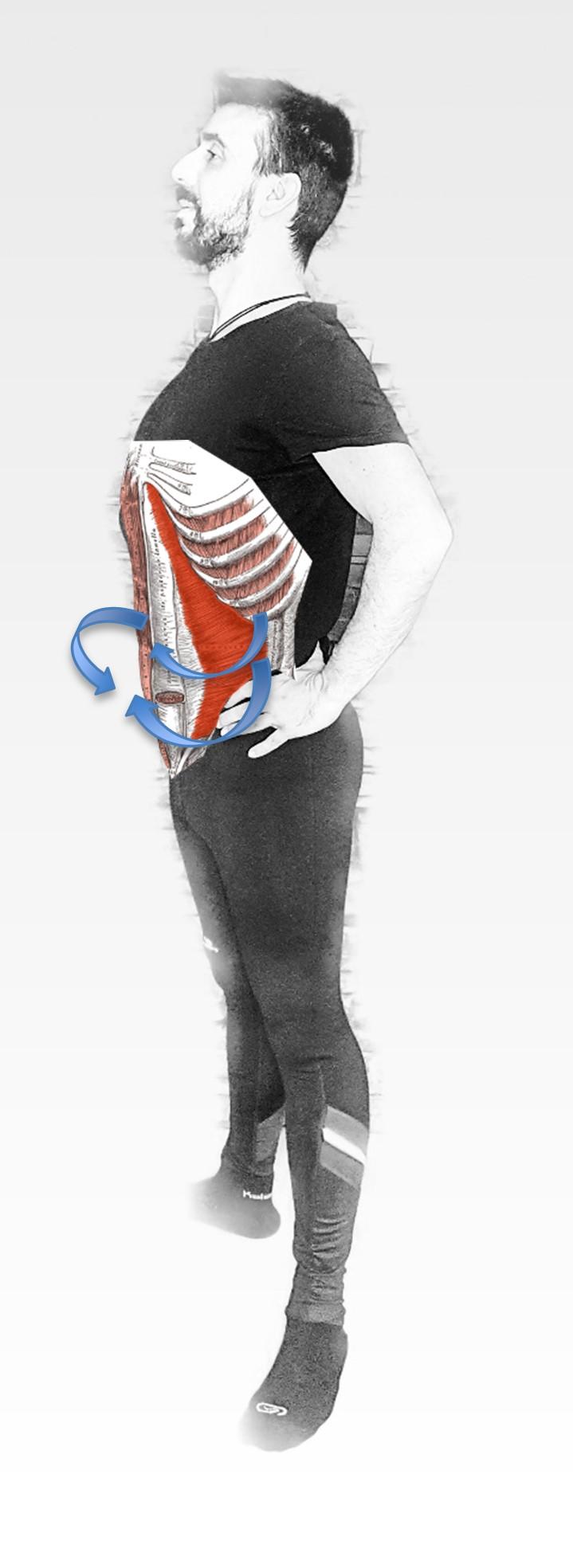Yoga terapeutico dolro lumbar